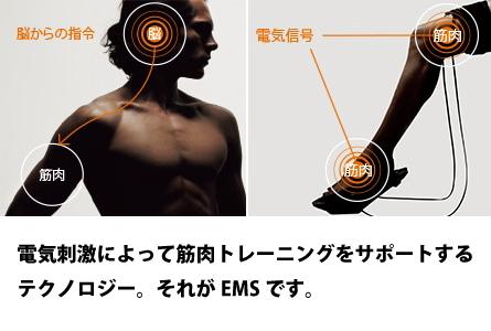 筋肉のトレーニングをサポート